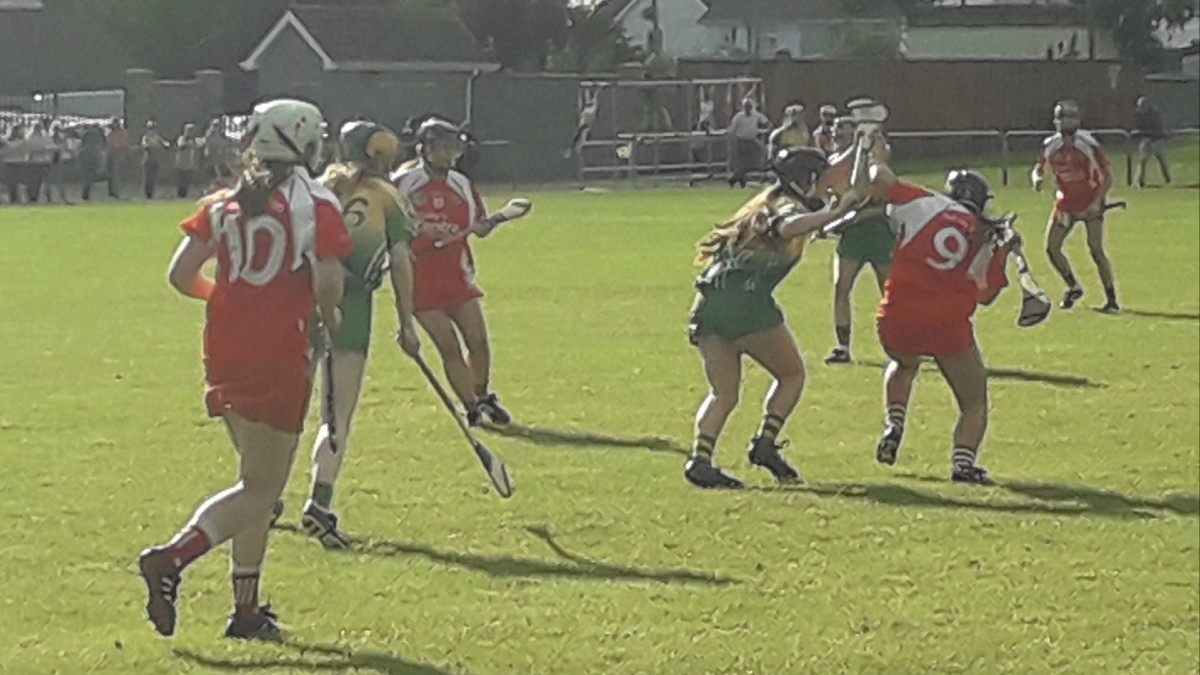 Camogie Match Report: Shinrone Hold Off Gallant Fightback
