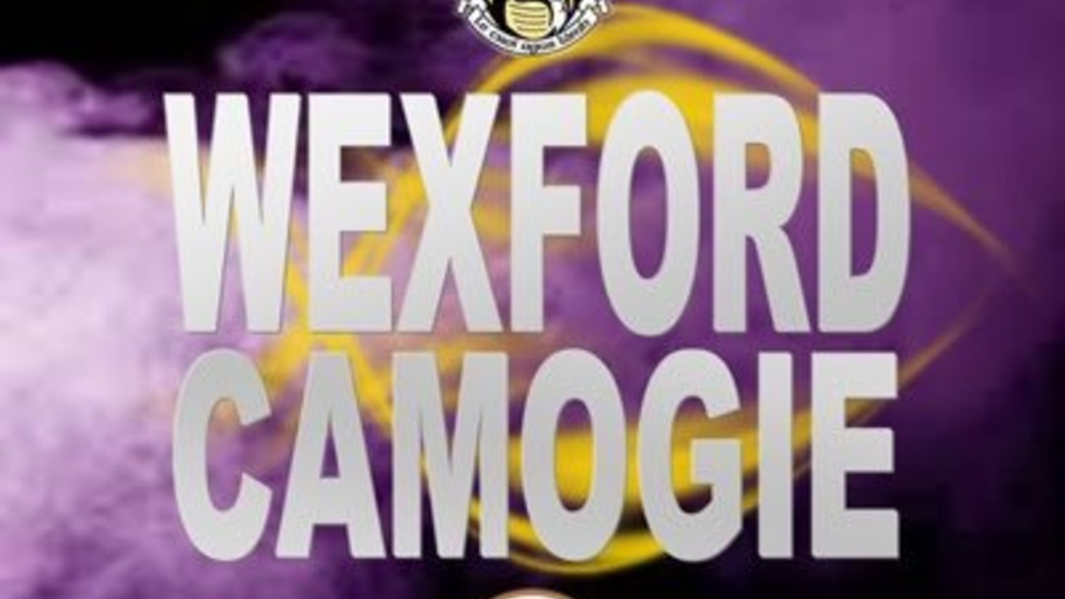 CAMOGIE: Wexford Survive Offaly Rally